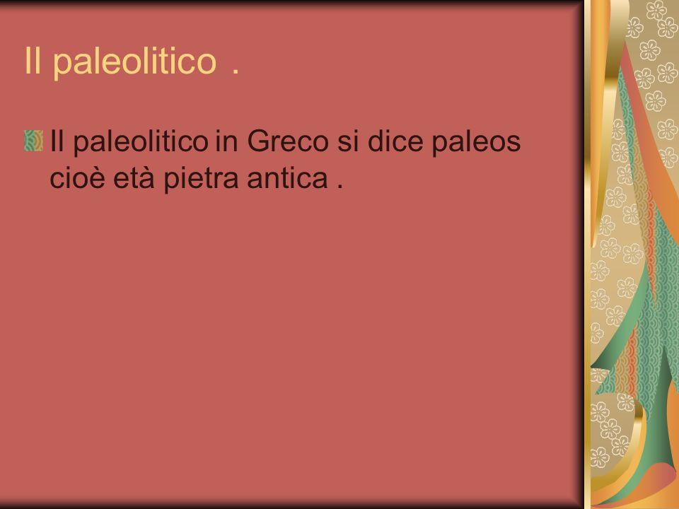Il paleolitico. Il paleolitico in Greco si dice paleos cioè età pietra antica.