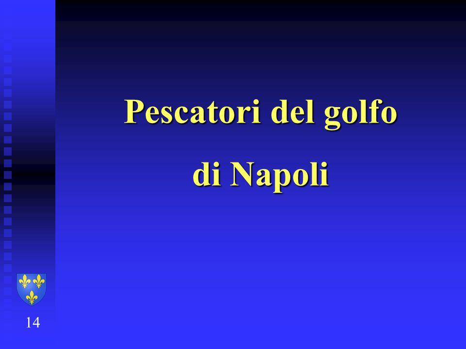 Pescatori del golfo di Napoli 14