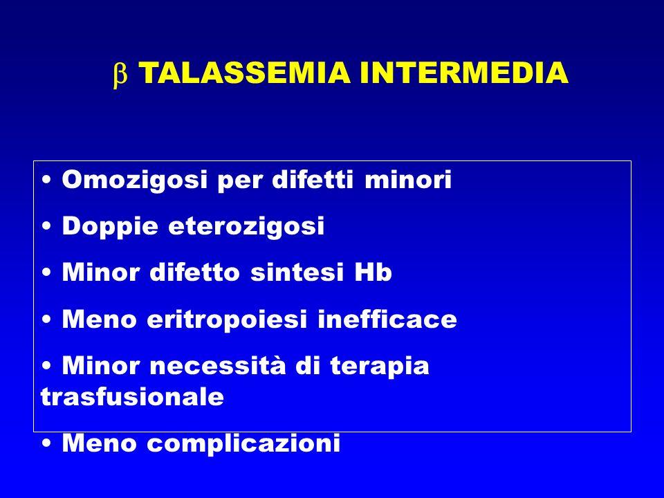 TALASSEMIA INTERMEDIA Omozigosi per difetti minori Doppie eterozigosi Minor difetto sintesi Hb Meno eritropoiesi inefficace Minor necessità di terapia