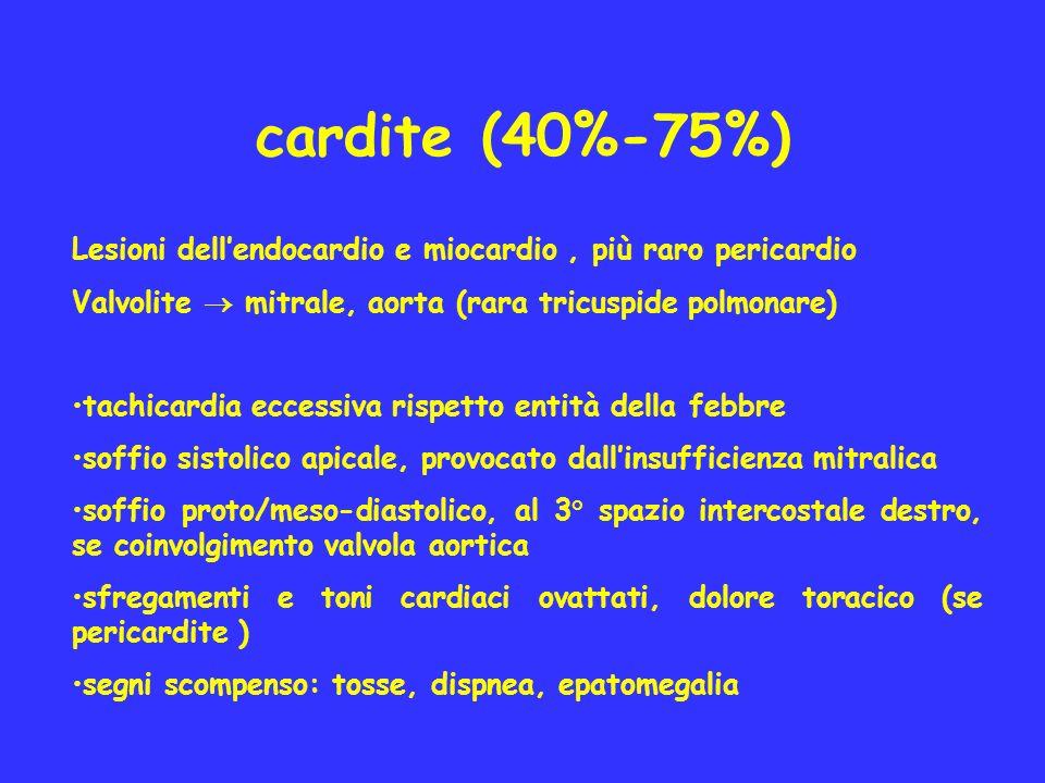 cardite (40%-75%) Lesioni dellendocardio e miocardio, più raro pericardio Valvolite mitrale, aorta (rara tricuspide polmonare) tachicardia eccessiva r