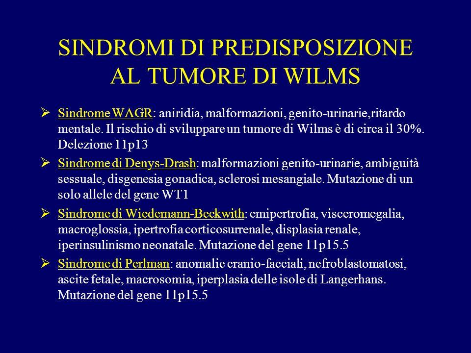 SINDROMI DI PREDISPOSIZIONE AL TUMORE DI WILMS Sindrome WAGR: aniridia, malformazioni, genito-urinarie,ritardo mentale. Il rischio di sviluppare un tu