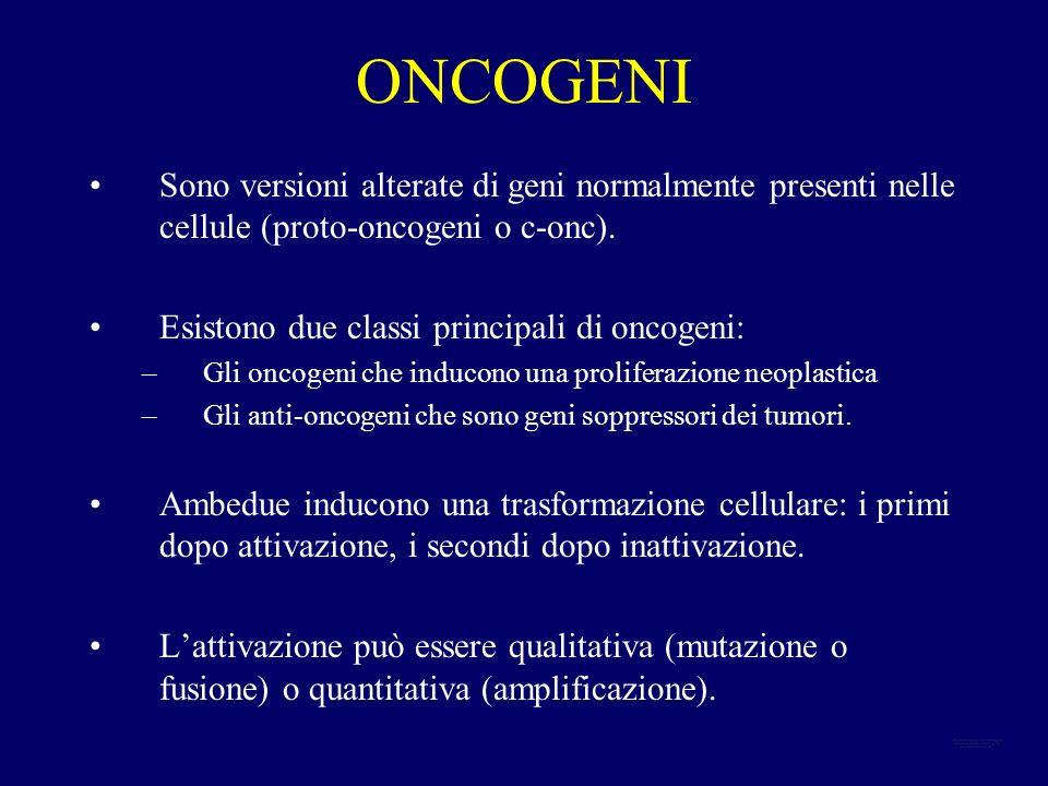 ONCOGENI LOCALIZZATI IN PROSSIMITA DI TRASLOCAZIONI CROMOSOMICHE DI ALCUNE NEOPLASIE PEDIATRICHE OncogeneTraslocazione cromosomica Neoplasia myc abl N-myc rel ets t(8;14)(q24;q32) t(9;22)(q34;q11) DMs, HSRs t(2;11)(q37;q14) t(11;22)(q24;q12) Linfoma di Burkitt Leucemia mieloide cronica Neuroblastoma Rabdomiosarcoma Sarcoma di Ewing, neuroepitelioma