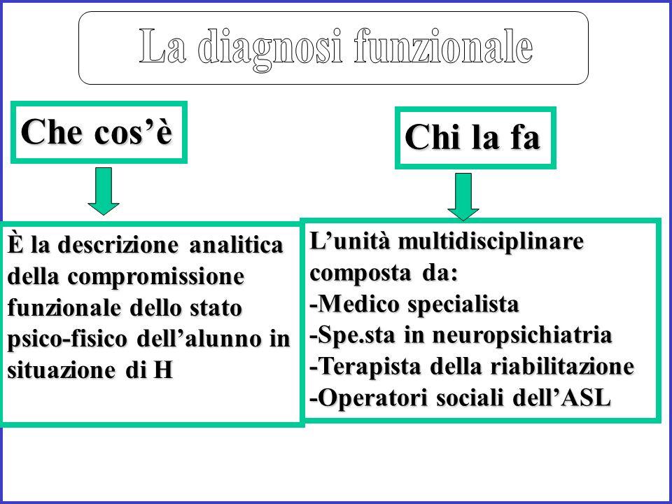 È la descrizione analitica della compromissione funzionale dello stato psico-fisico dellalunno in situazione di H Lunità multidisciplinare composta da