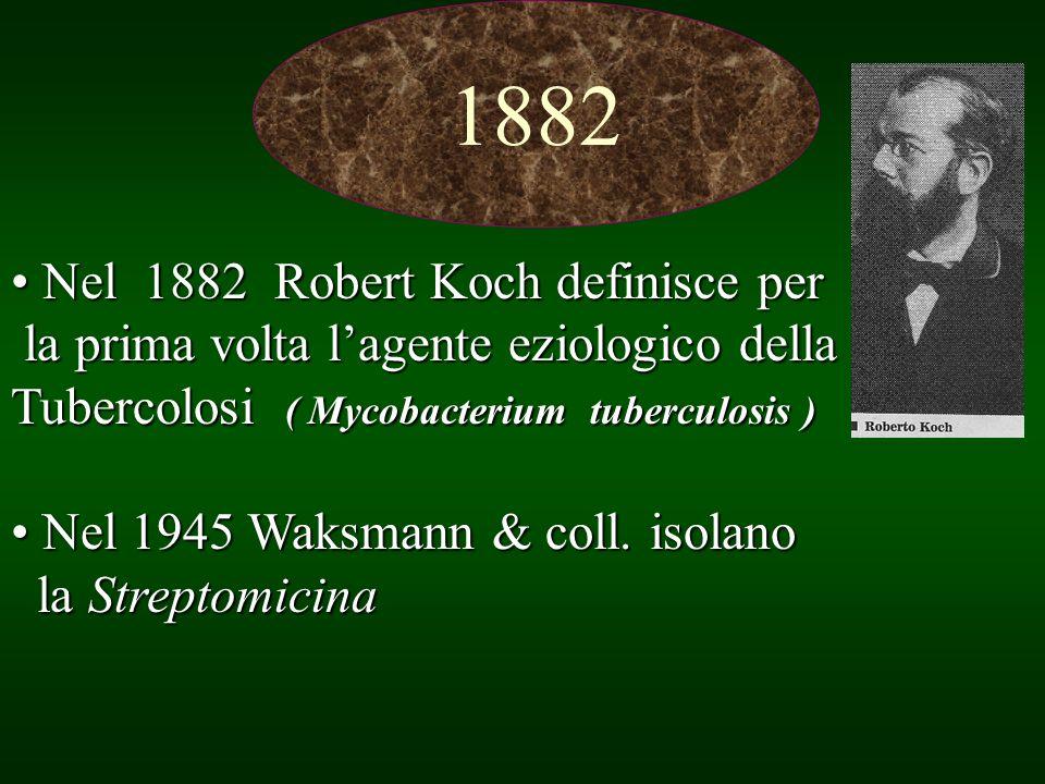 Nel 1882 Robert Koch definisce per Nel 1882 Robert Koch definisce per la prima volta lagente eziologico della la prima volta lagente eziologico della