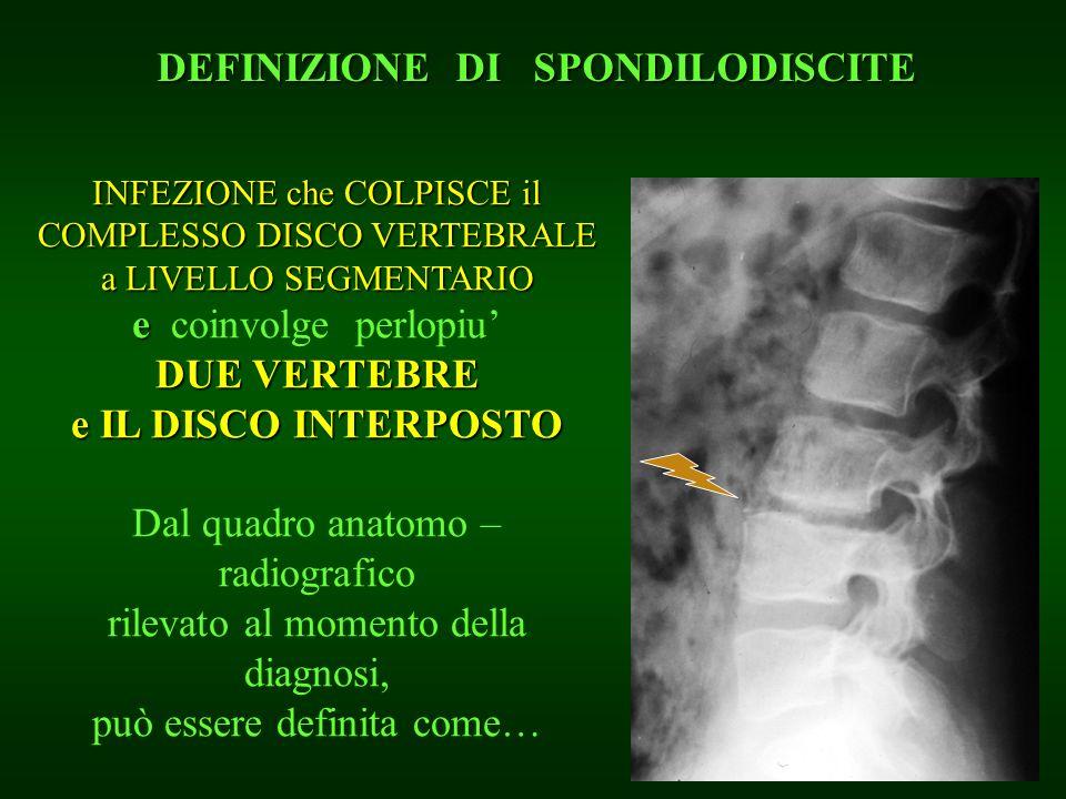 INFEZIONE che COLPISCE il COMPLESSO DISCO VERTEBRALE a LIVELLO SEGMENTARIO e e coinvolge perlopiu DUE VERTEBRE e IL DISCO INTERPOSTO Dal quadro anatom