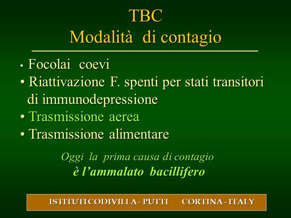 TBC Modalità di contagio Focolai coevi Riattivazione F. spenti per stati transitori Riattivazione F. spenti per stati transitori di immunodepressione