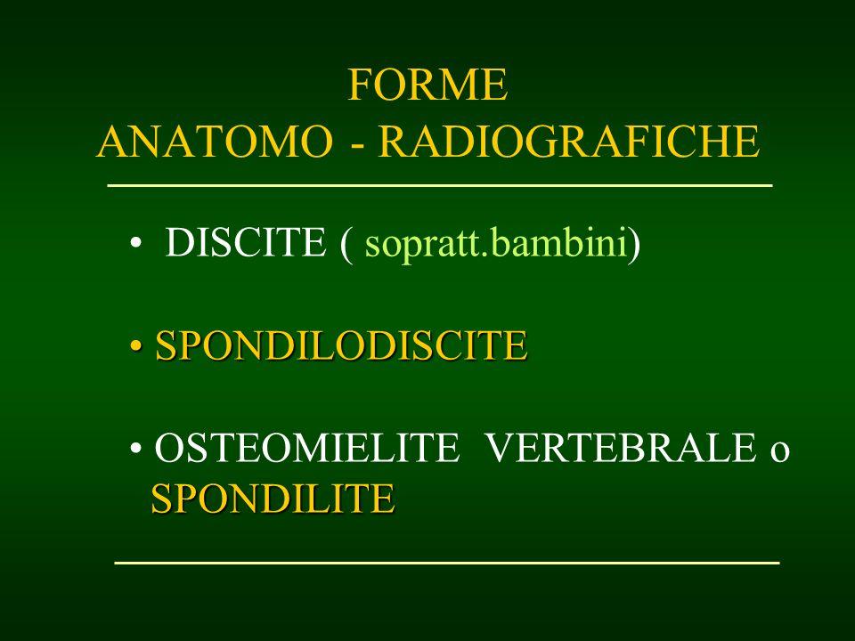 FORME ANATOMO - RADIOGRAFICHE DISCITE ( sopratt.bambini) SPONDILODISCITE SPONDILODISCITE OSTEOMIELITE VERTEBRALE o SPONDILITE