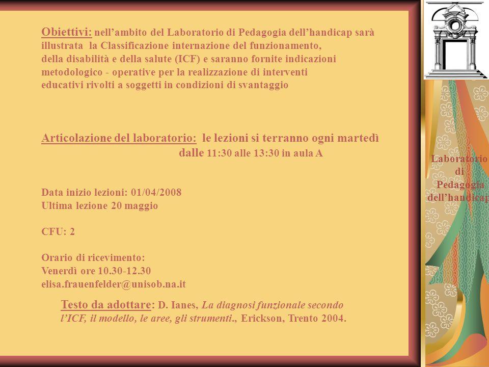 Testo da adottare: D. Ianes, La diagnosi funzionale secondo lICF, il modello, le aree, gli strumenti., Erickson, Trento 2004. Obiettivi: nellambito de