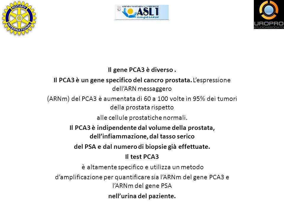 Il gene PCA3 è diverso. Il PCA3 è un gene specifico del cancro prostata. Lespressione dellARN messaggero (ARNm) del PCA3 è aumentata di 60 a 100 volte