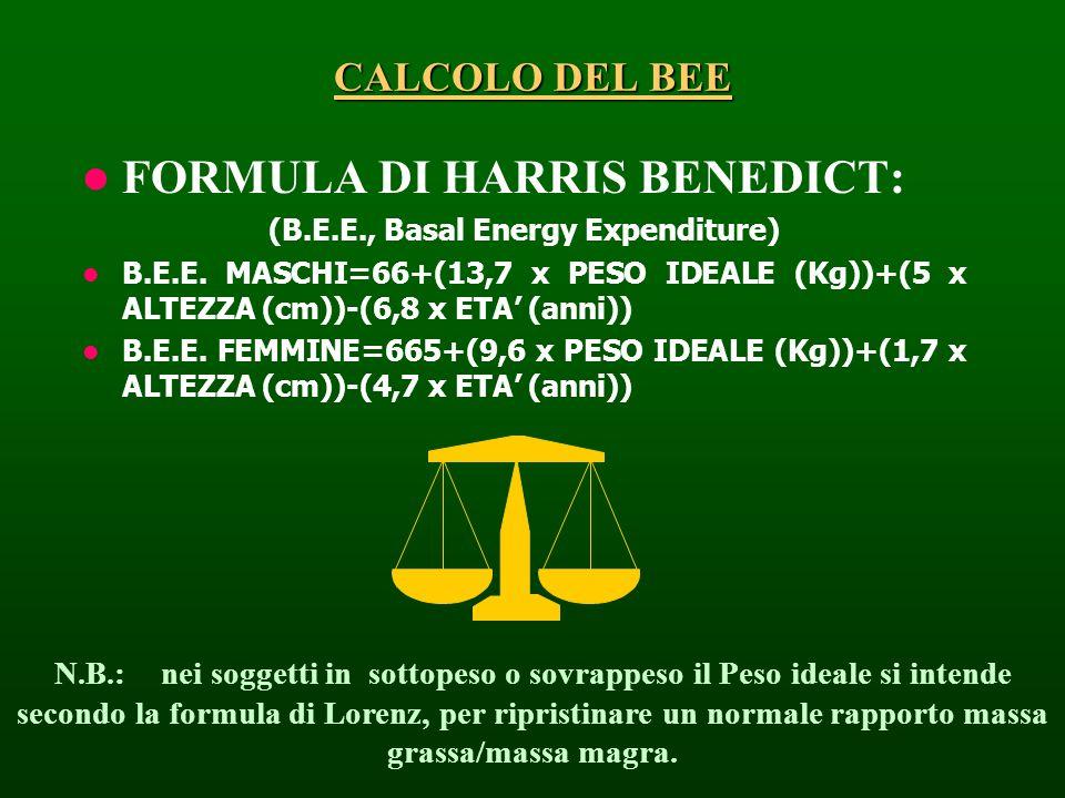 CALCOLO DEL BEE FORMULA DI HARRIS BENEDICT: (B.E.E., Basal Energy Expenditure) B.E.E. MASCHI=66+(13,7 x PESO IDEALE (Kg))+(5 x ALTEZZA (cm))-(6,8 x ET