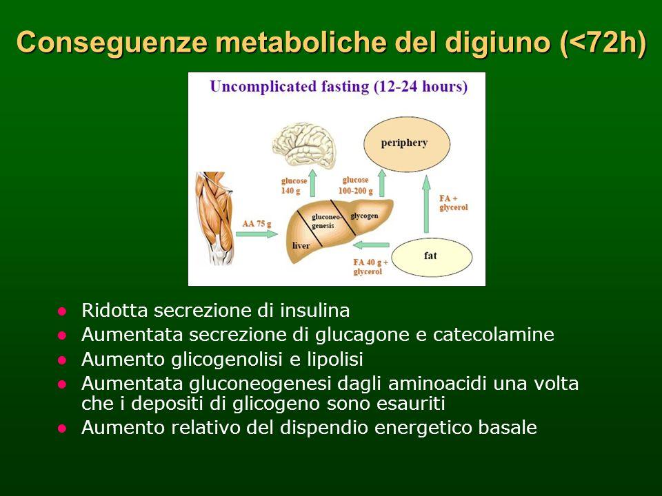 Conseguenze metaboliche del digiuno (<72h) Ridotta secrezione di insulina Aumentata secrezione di glucagone e catecolamine Aumento glicogenolisi e lip
