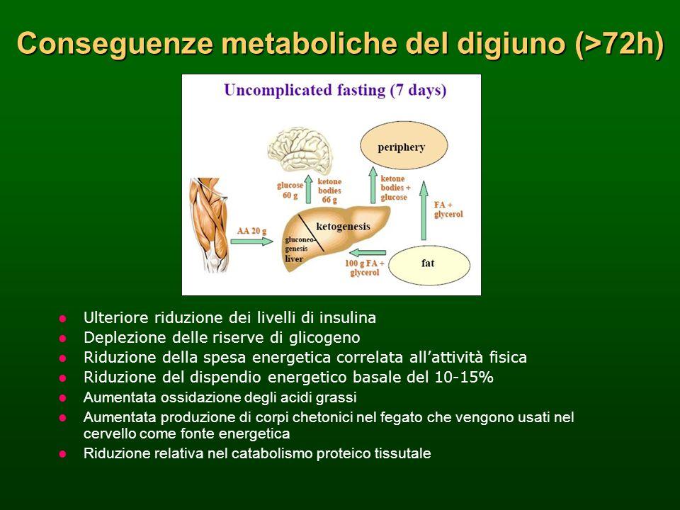 Ulteriore riduzione dei livelli di insulina Deplezione delle riserve di glicogeno Riduzione della spesa energetica correlata allattività fisica Riduzi