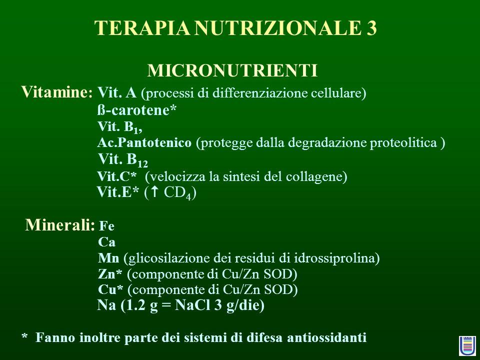 MICRONUTRIENTI Vitamine : Vit. A (processi di differenziazione cellulare) ß-carotene* Vit. B 1, Ac.Pantotenico (protegge dalla degradazione proteoliti