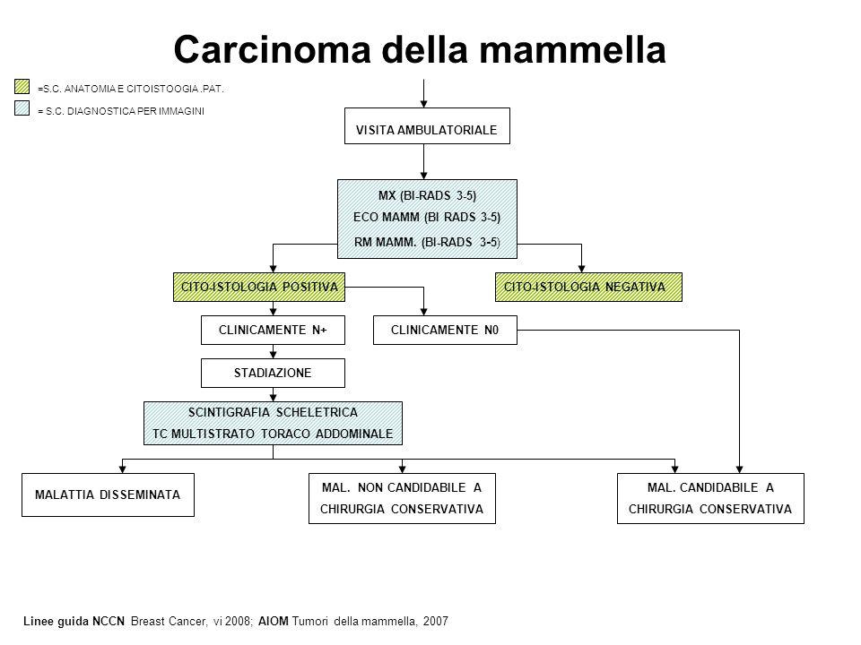 Carcinoma della mammella VISITA AMBULATORIALE MX (BI-RADS 3-5) ECO MAMM (BI RADS 3-5) RM MAMM. (BI-RADS 3 - 5) =S.C. ANATOMIA E CITOISTOOGIA.PAT. = S.