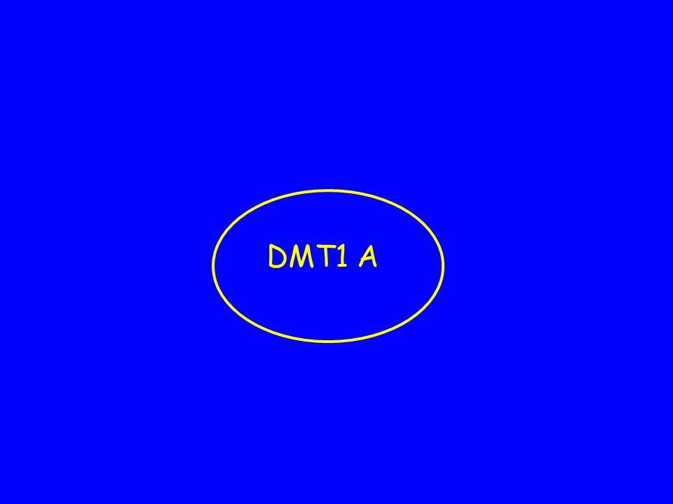 Diagnosi differenziale Sino a pochi anni or sono si pensava che tutto il diabete in età pediatrica fosse una sola malattia : DMT1a Dati recenti sul diabete genetico dellinfanzia, Mody, DMT2 hanno modificato questa asserzione La diagnosi differenziale deve essere parte del lavoro del diabetologo pediatra La mancanza ad oggi di aiuto dalla diagnostica per immagini e genetica complica il quadro