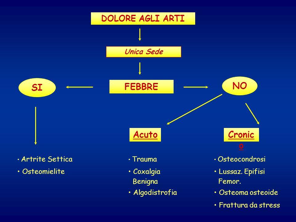 DOLORE AGLI ARTI Unica Sede FEBBRE Artrite Settica Osteomielite AcutoCronic o NO SI Trauma Coxalgia Benigna Algodistrofia Osteocondrosi Lussaz. Epifis