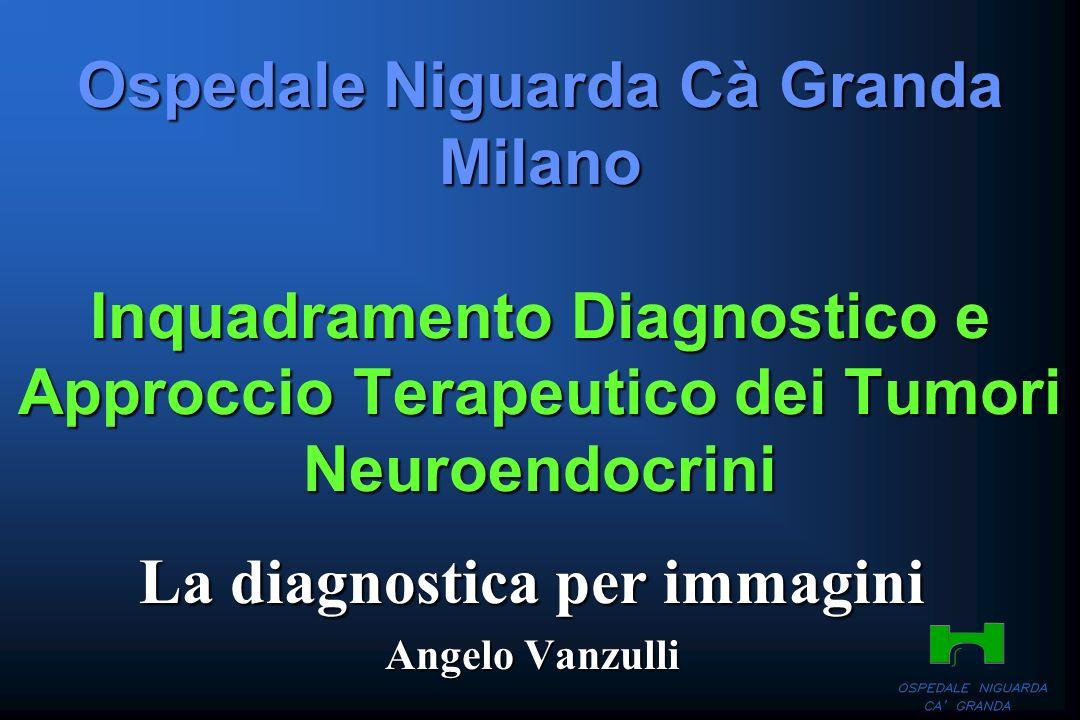Ospedale Niguarda Cà Granda Milano Inquadramento Diagnostico e Approccio Terapeutico dei Tumori Neuroendocrini La diagnostica per immagini Angelo Vanz