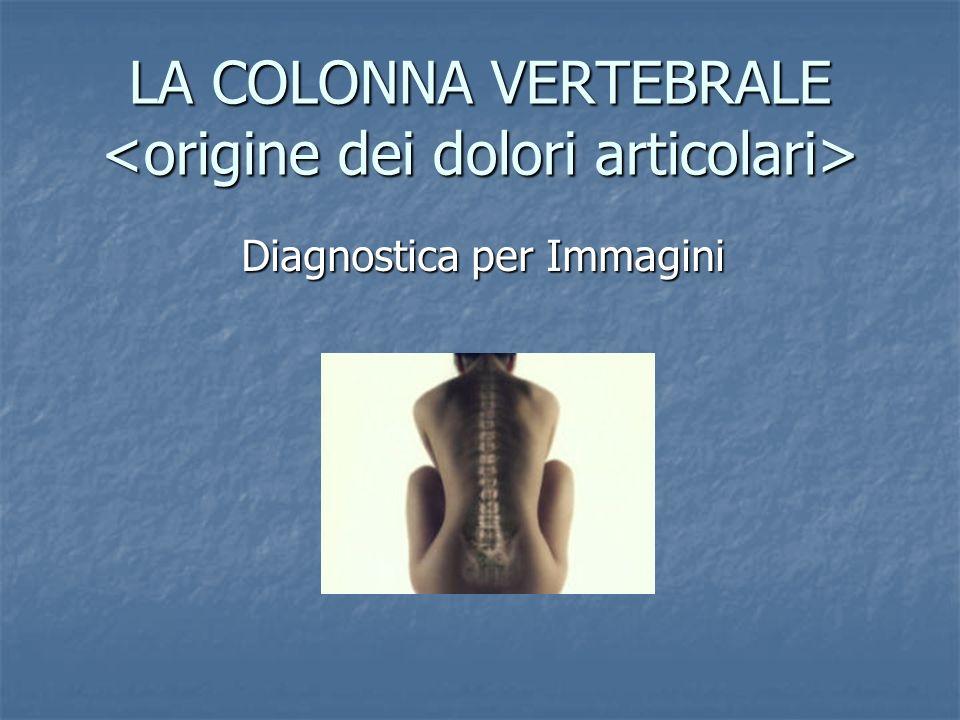 LA COLONNA VERTEBRALE LA COLONNA VERTEBRALE Diagnostica per Immagini