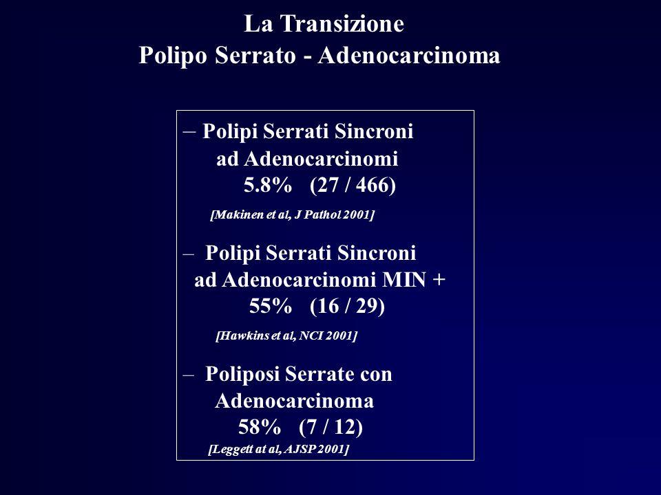 La Transizione Polipo Serrato - Adenocarcinoma – Polipi Serrati Sincroni ad Adenocarcinomi 5.8% (27 / 466) [Makinen et al, J Pathol 2001] – Polipi Ser