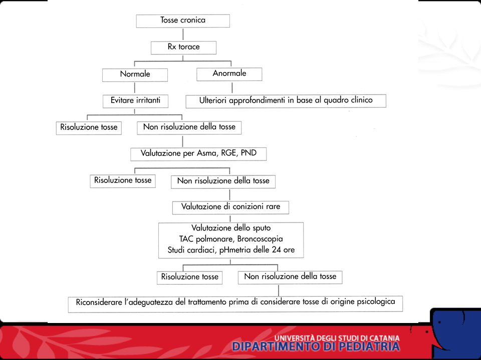Cause di tosse persistente in eta prescolare Compromissione tracheale (esterna e interna) Infezioni Virali Mycoplasma Batteriche (Pertosse) Fibrosi ci