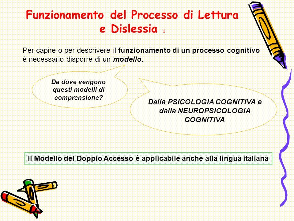 Funzionamento del Processo di Lettura e Dislessia 1 Per capire o per descrivere il funzionamento di un processo cognitivo è necessario disporre di un modello.