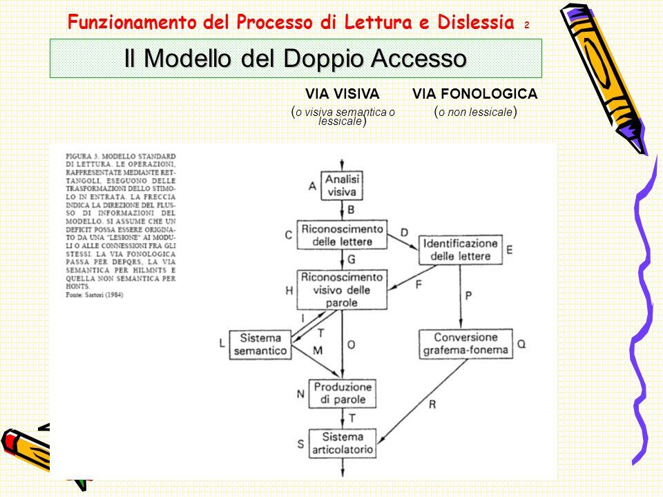 Funzionamento del Processo di Lettura e Dislessia 2 Il Modello del Doppio Accesso VIA VISIVA ( o visiva semantica o lessicale ) VIA FONOLOGICA ( o non lessicale )