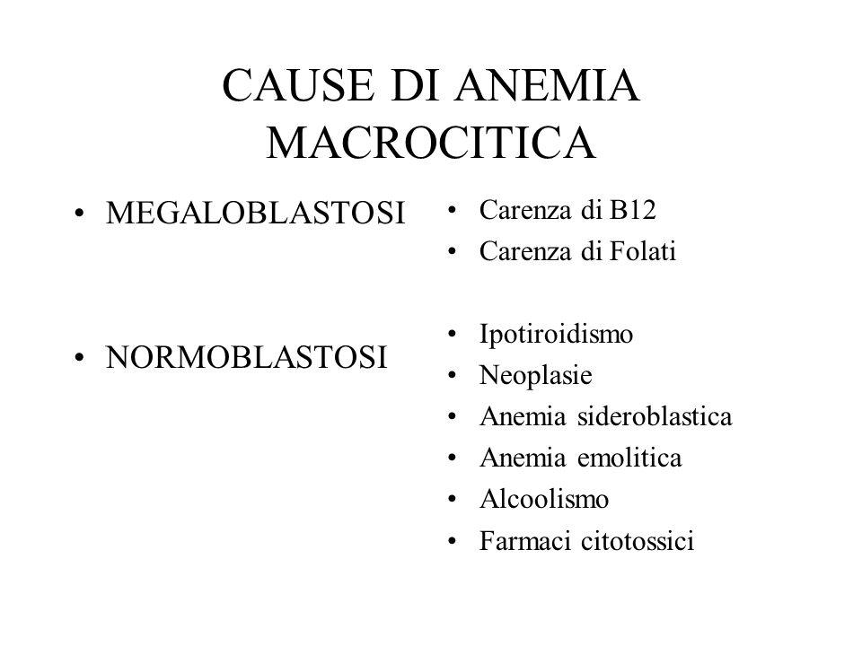 CAUSE DI ANEMIA MACROCITICA MEGALOBLASTOSI NORMOBLASTOSI Carenza di B12 Carenza di Folati Ipotiroidismo Neoplasie Anemia sideroblastica Anemia emoliti