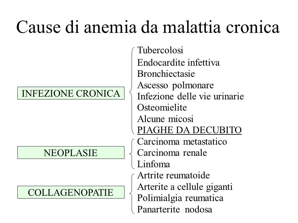 Cause di anemia da malattia cronica Tubercolosi Endocardite infettiva Bronchiectasie Ascesso polmonare Infezione delle vie urinarie Osteomielite Alcun