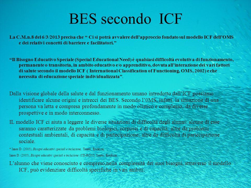BES secondo ICF La C.M.n.8 del 6/3/2013 precisa che Ci si potrà avvalere dellapproccio fondato sul modello ICF dellOMS e dei relativi concetti di barr