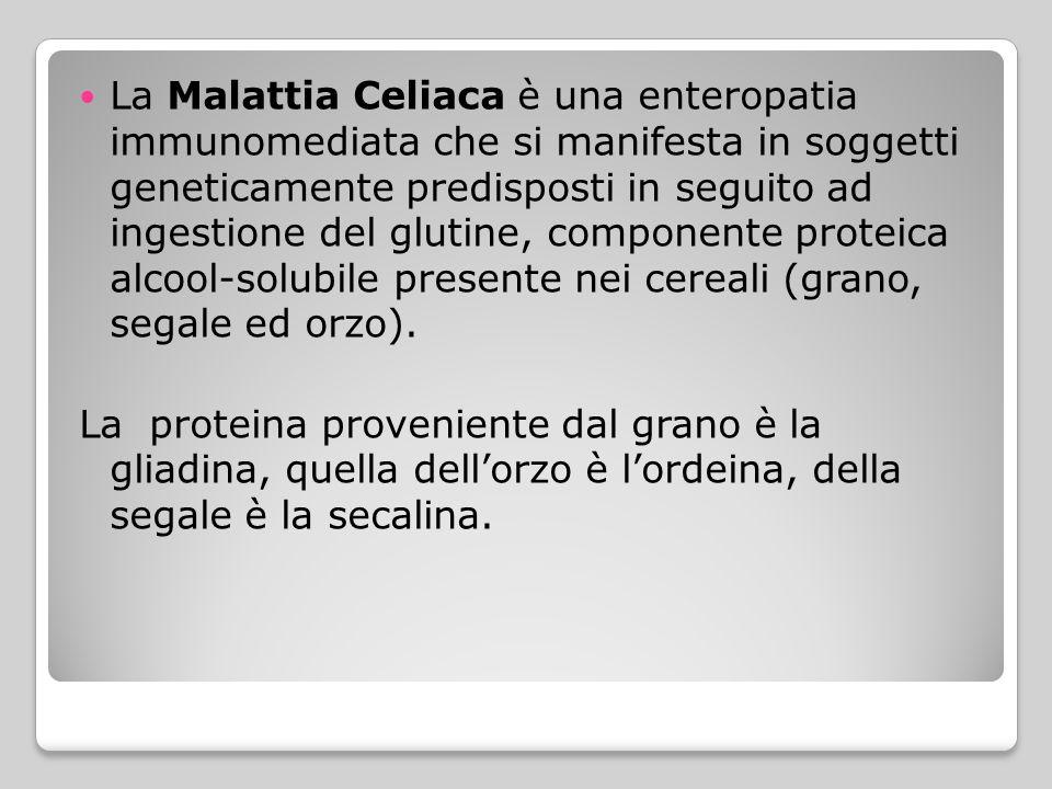 La Malattia Celiaca è una enteropatia immunomediata che si manifesta in soggetti geneticamente predisposti in seguito ad ingestione del glutine, compo