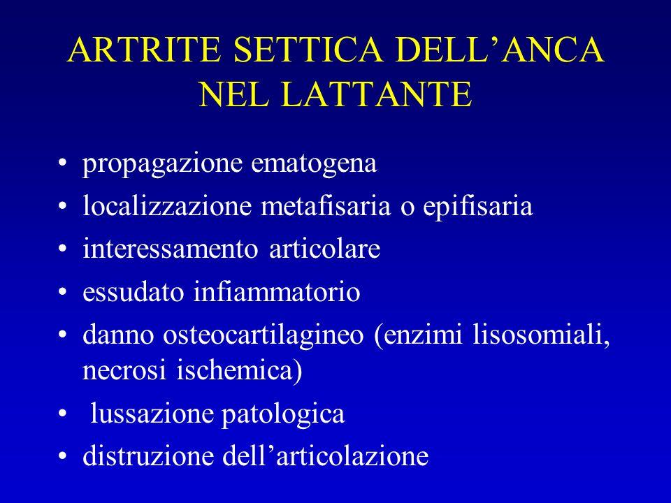 ARTRITE SETTICA DELLANCA NEL LATTANTE propagazione ematogena localizzazione metafisaria o epifisaria interessamento articolare essudato infiammatorio