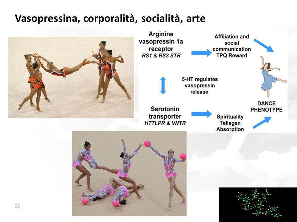 Vasopressina, corporalità, socialità, arte 23