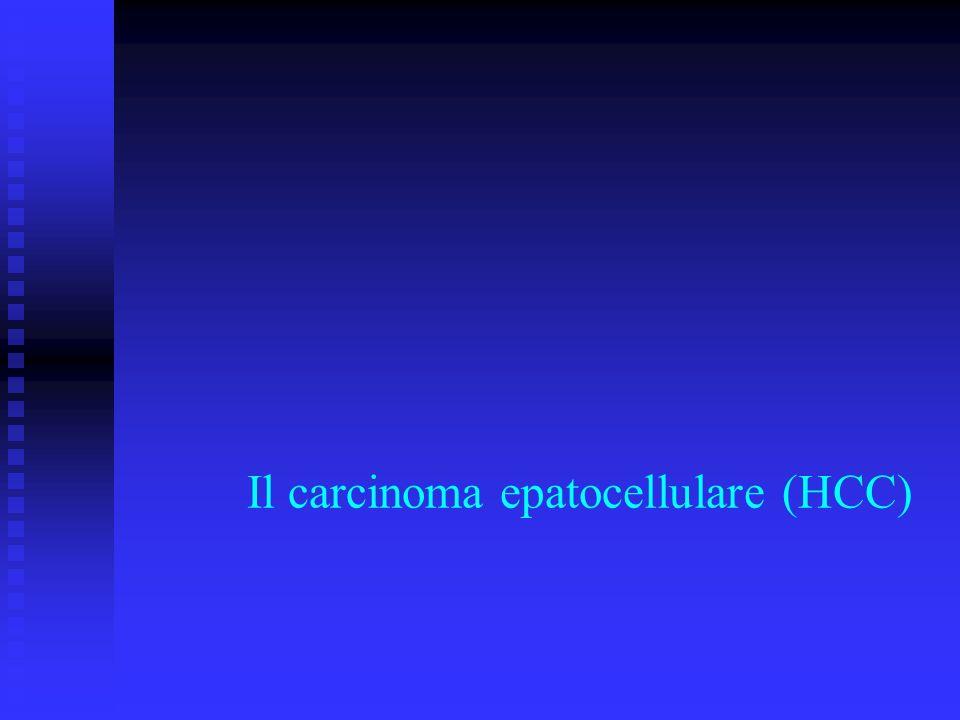 Il carcinoma epatocellulare (HCC)