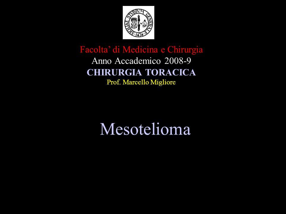 Mesotelioma Facolta di Medicina e Chirurgia Anno Accademico 2008-9 CHIRURGIA TORACICA Prof.