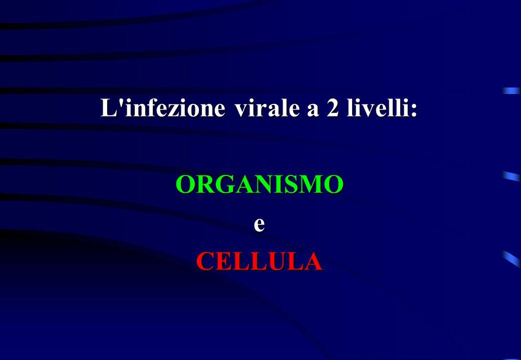 L'infezione virale a 2 livelli: ORGANISMOeCELLULA