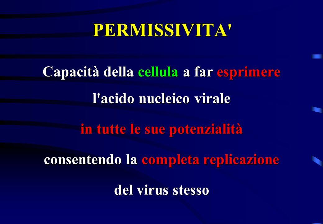 PERMISSIVITA' Capacità della cellula a far esprimere l'acido nucleico virale in tutte le sue potenzialità consentendo la completa replicazione del vir
