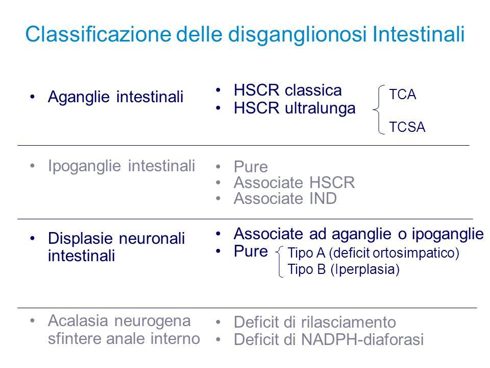 Classificazione delle disganglionosi Intestinali Aganglie intestinali Ipoganglie intestinali Displasie neuronali intestinali Acalasia neurogena sfinte
