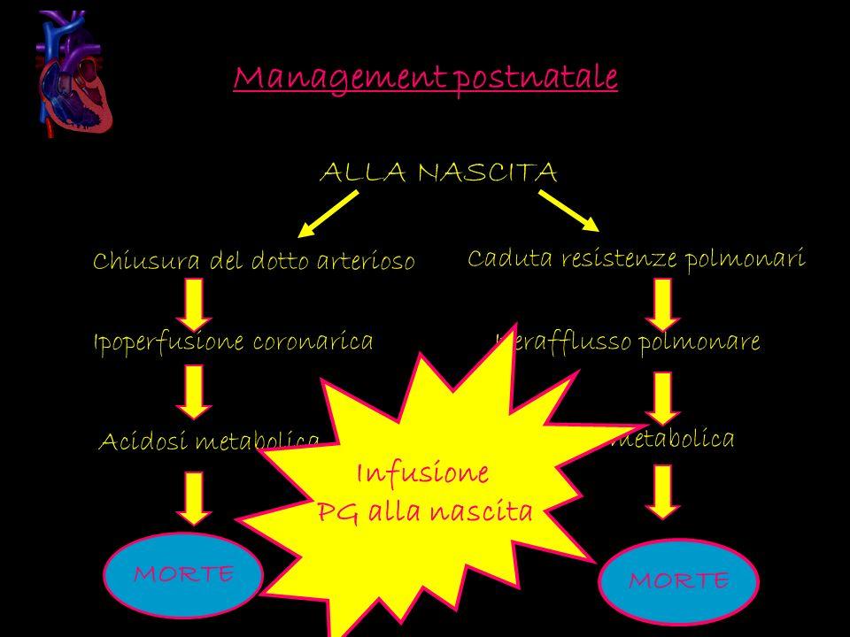 Management postnatale ALLA NASCITA Chiusura del dotto arterioso Ipoperfusione coronarica Acidosi metabolica Caduta resistenze polmonari Iperafflusso p