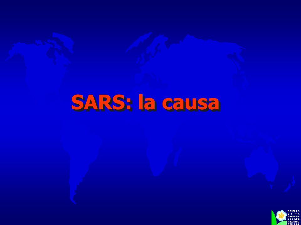 SARS: la causa