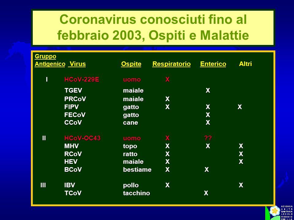 Gruppo Antigenico Virus OspiteRespiratorio Enterico Altri I HCoV-229Euomo X I HCoV-229Euomo X TGEVmaiale X PRCoVmaiale X PRCoVmaiale X FIPVgatto X X X