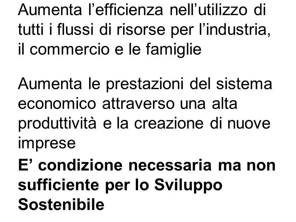 Aumenta lefficienza nellutilizzo di tutti i flussi di risorse per lindustria, il commercio e le famiglie Aumenta le prestazioni del sistema economico