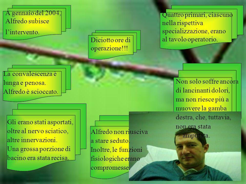 A gennaio del 2004, Alfredo subisce lintervento. Quattro primari, ciascuno nella rispettiva specializzazione, erano al tavolo operatorio. La convalesc
