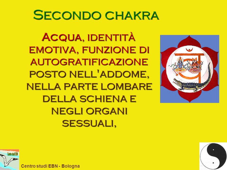 Secondo chakra Acqua, identità emotiva, funzione di autogratificazione posto nell'addome, nella parte lombare della schiena e negli organi sessuali, C
