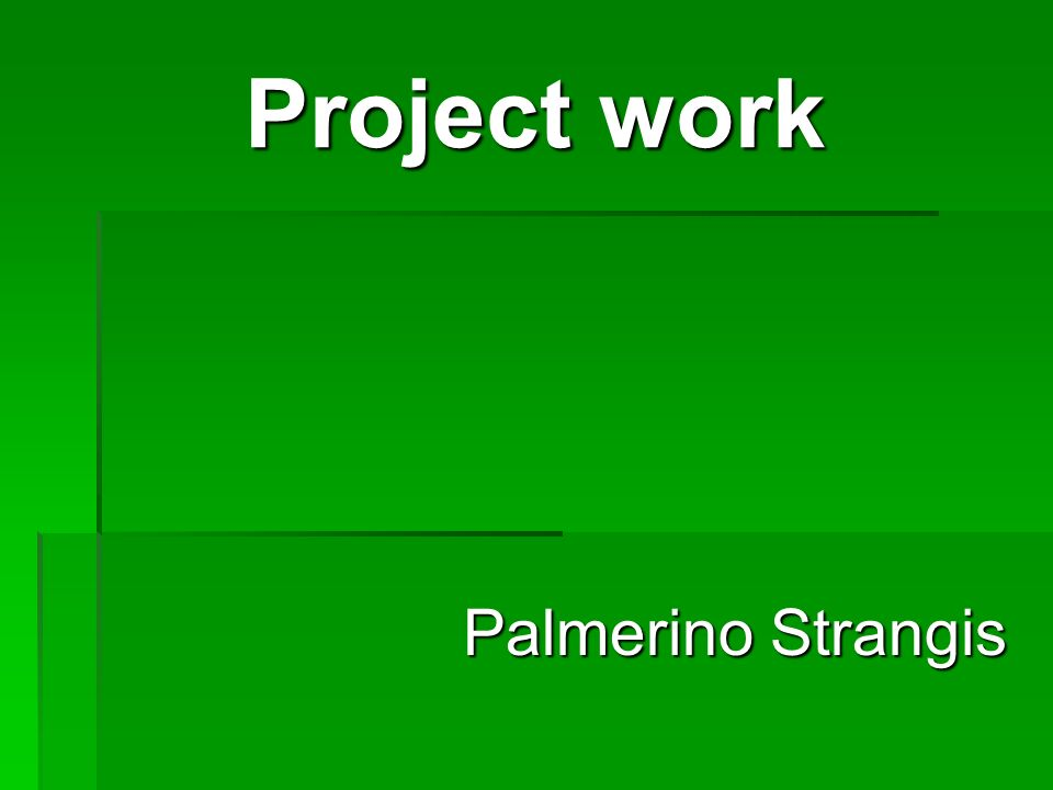 Project work Palmerino Strangis