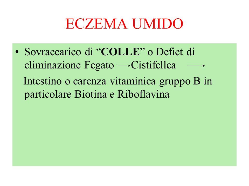 ECZEMA UMIDO Sovraccarico di COLLE o Defict di eliminazione Fegato Cistifellea Intestino o carenza vitaminica gruppo B in particolare Biotina e Ribofl