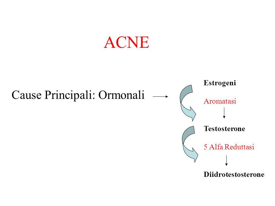FUNGHI MEDICINALI Coryolus versicolor Potente attivatore del piatto TH1 e modulatore del TH2 Estratto titolato al 30% in polisaccaridi 1-3 cps al dì da 330 mg Vitamina C 180mg al dì