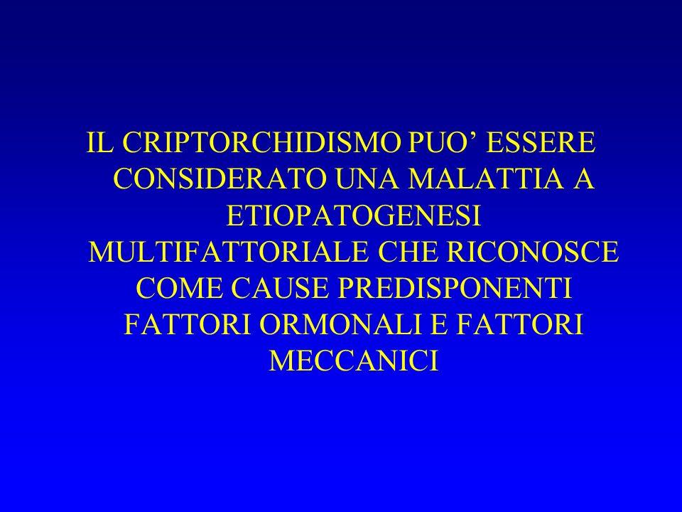 CRIPTORCHIDISMO: PATOGENESI ALTERATA SECREZIONE MIF ( GLICOPROTEINA CELL. SERTOLI) RIDOTTA SECREZIONE LH, TESTOSTERONE DEFICIT RECETTORIALI FATTORI ME