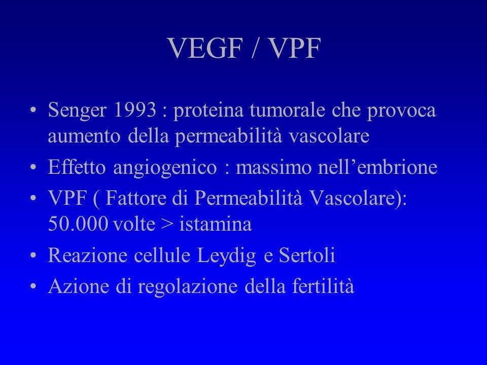 Effetti dellHCG sul testicolo Alterazioni infiammatorie Aumento permeabilità vascolare Lesioni degenerative e di tipo apoptotico Aumento diametro tubu
