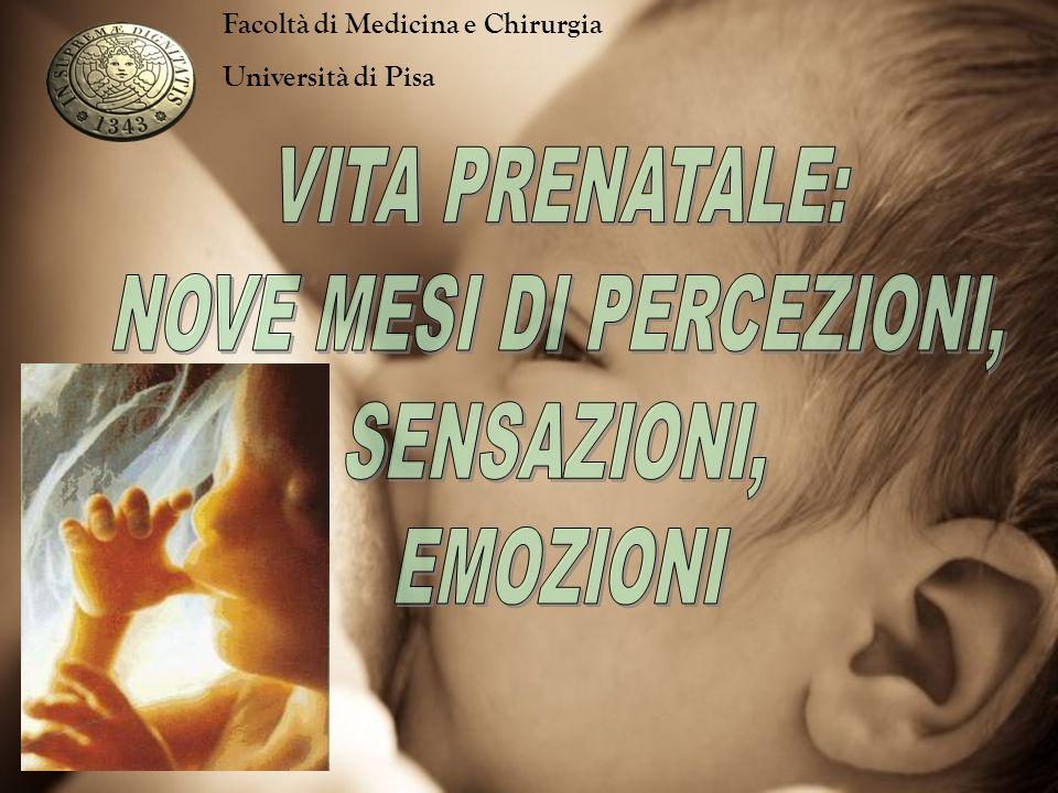 A partire dalla 16°-17° s.d.g (settimana di gestazione) il feto mostra preferenze, reazioni e comportamenti che ritroveremo poi dopo la nascita.