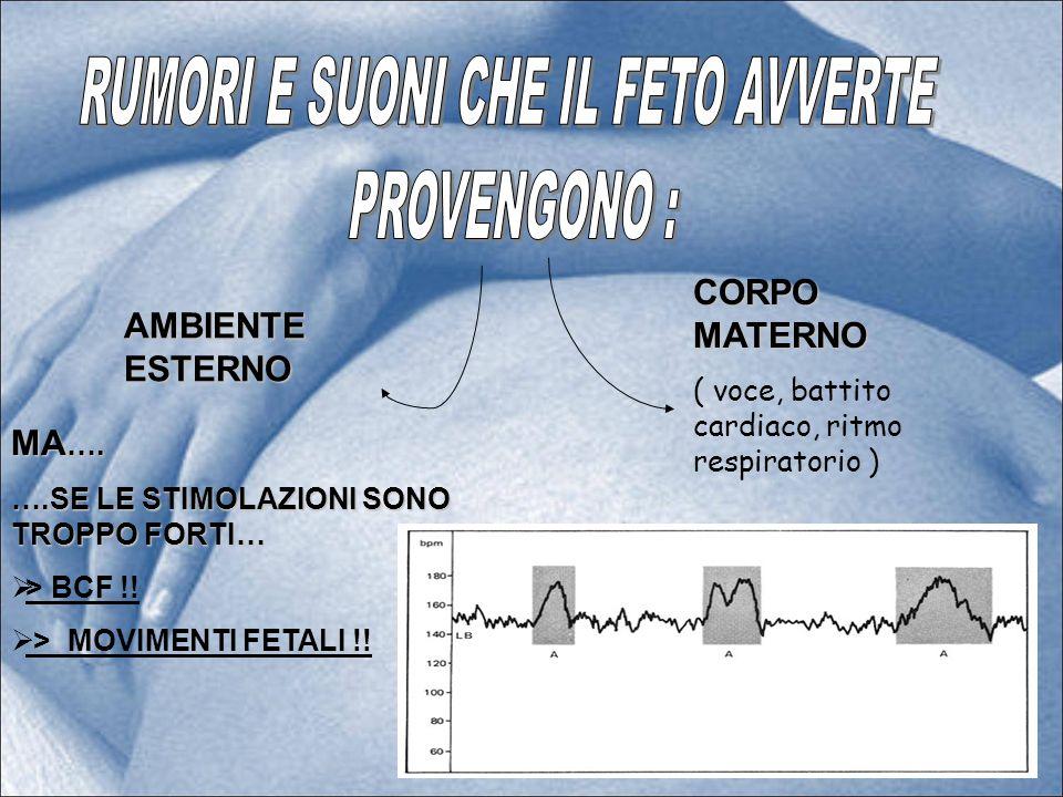 AMBIENTE ESTERNO CORPO MATERNO ( voce, battito cardiaco, ritmo respiratorio ) MA …. ….SE LE STIMOLAZIONI SONO TROPPO FORTI… > BCF !! > MOVIMENTI FETAL